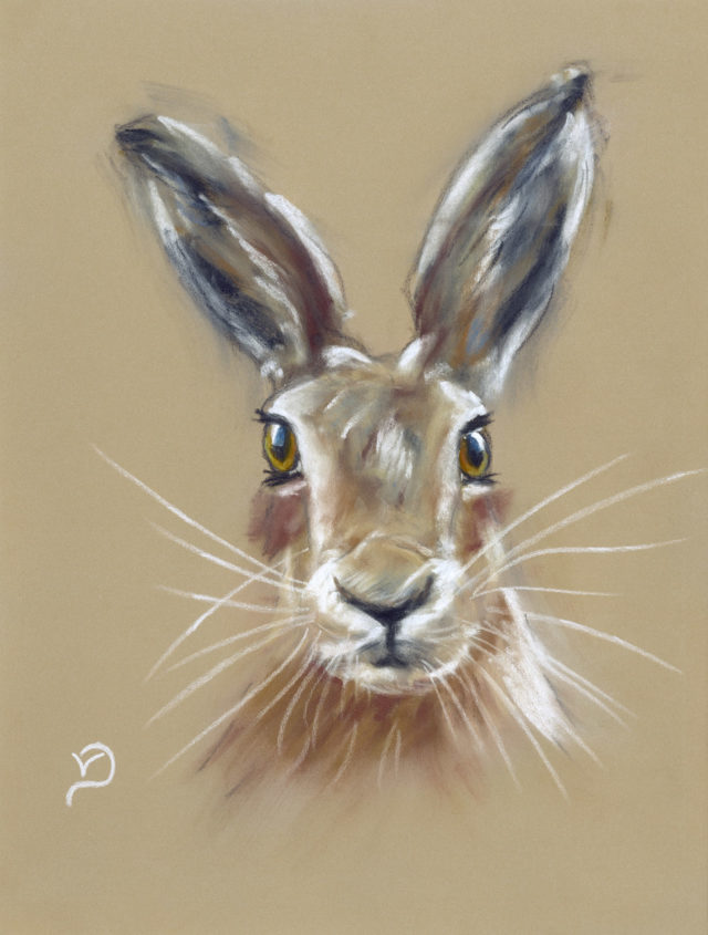 Abstract Hare by Vicki Davidson