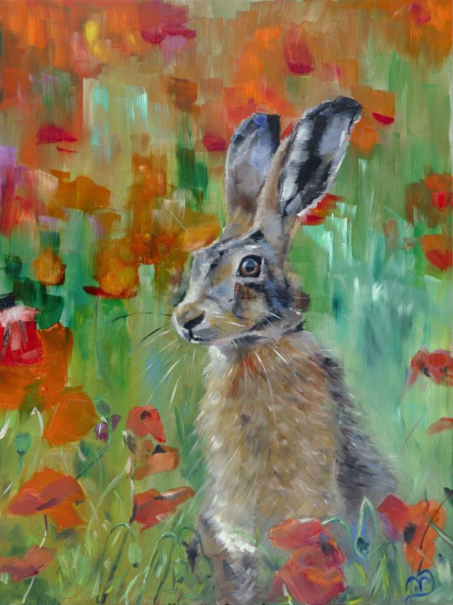 Poppy Hare