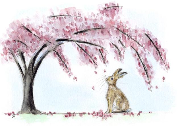 Blossom Hare
