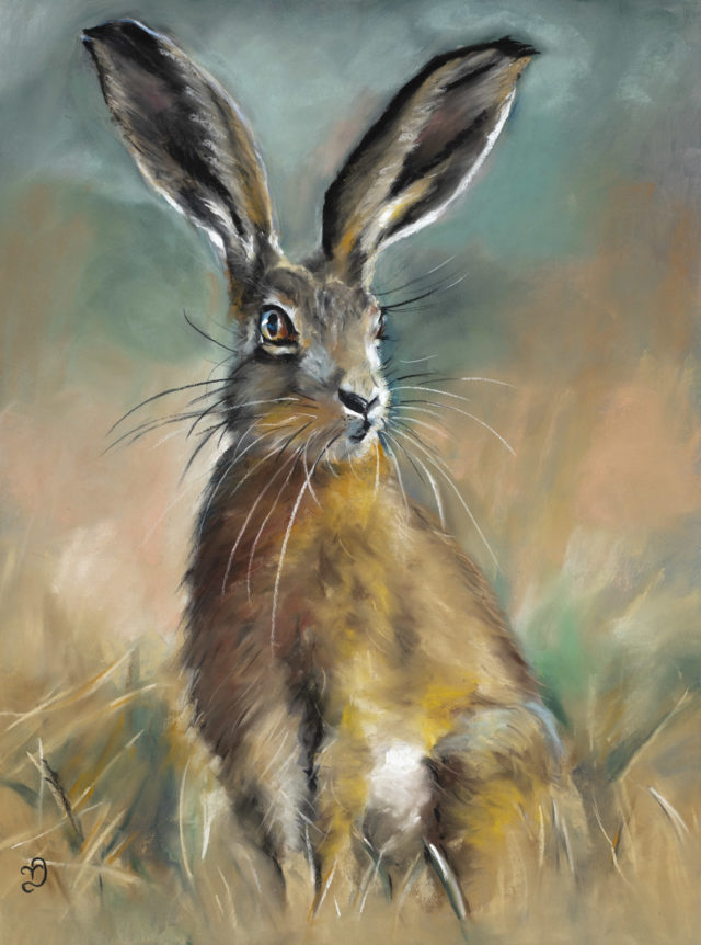 Regal Hare
