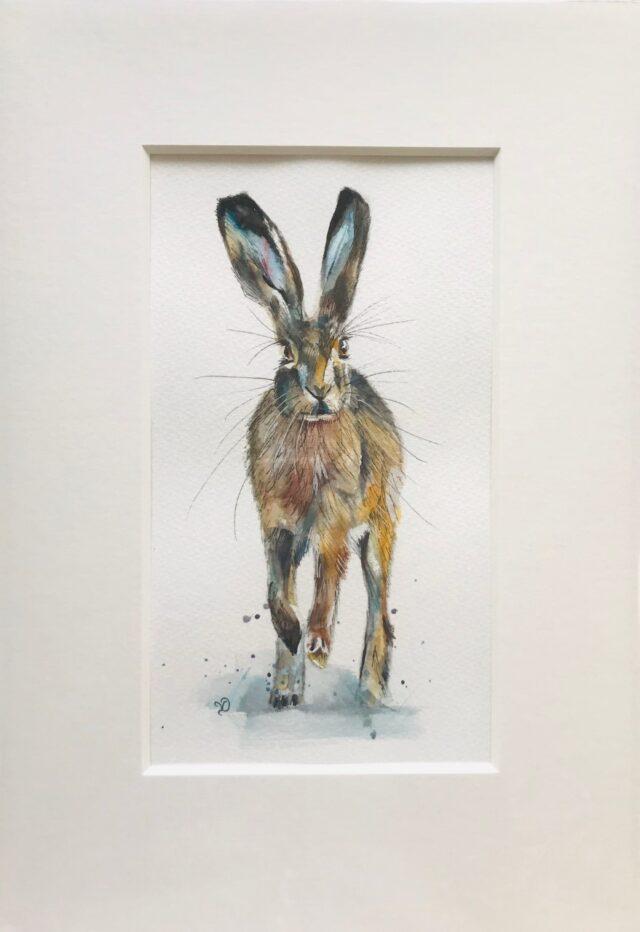 Running Hare. Mounted painting. Watercolour artwork. Vicki Davidson