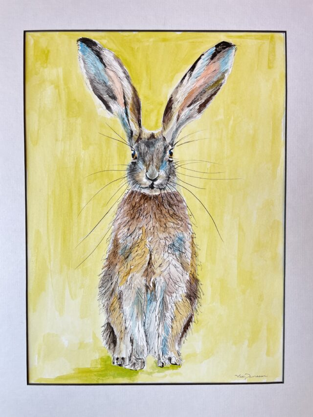 Perky Hare. Acrylic and ink drawing by North Yorkshire artist Vicki Davidson